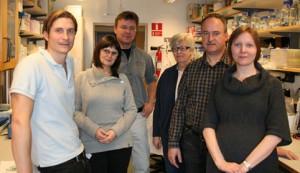 Heiko Herwalds forskargrupp