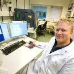 Stamceller gör det möjligt att reparera hjärtan
