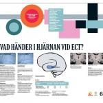 Poster Forskningens Dag 2010