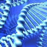 Gynnsam mutation - frisk trots riskfaktorer för typ 2 diabetes