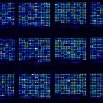 microarray-platta