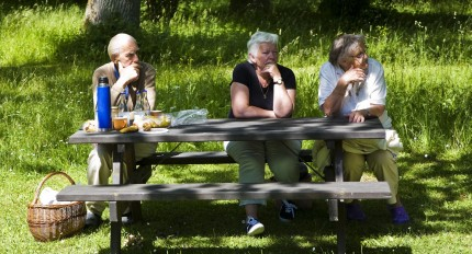 Äldre kvinnor på parkbänk