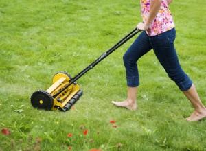 klippa gräs