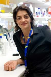 Sabina Resic Lindehammer