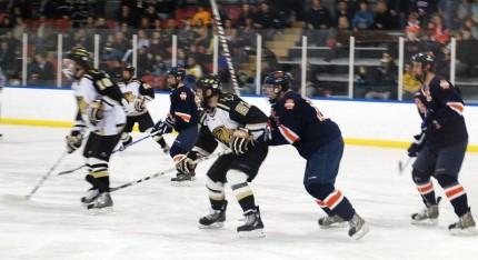 ishockey/Wikimedia Commons