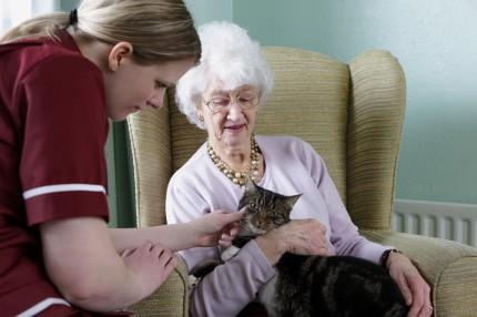 Äldre patient med vårdpersonal och katt
