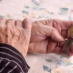 händer, äldre person som håller ett armbandsur