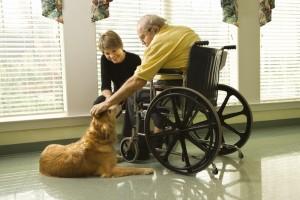 vårdhund och boende inom äldreomsorgen