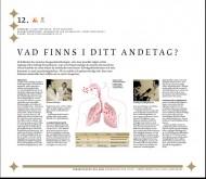 Forskningens Dag 2011 poster nr 12