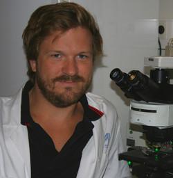 Nils Wierup