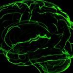 Inflammation kopplas till depression vid Parkinson