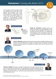 Nobelpriset i medicin och fysiologi 2013
