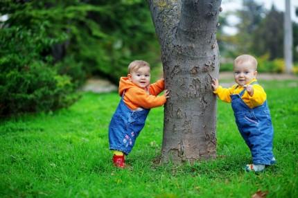 tvillingar