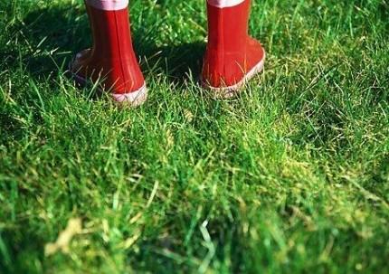 Med gummistövlar i gräs