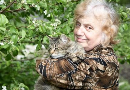 dam med katt