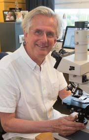 Tadeusz Wieloch