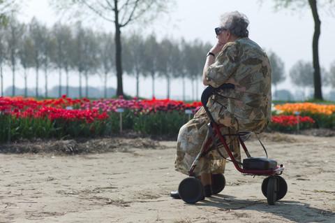 en äldre kvinna sitter på sin rollator. Hon befijner sig i en park, framför henne finns en rabatt med röda och gula blommor och längre bort en rad med träd. Vi ser henne snett bakifrån och hon tittar ut över rabattera.