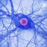 Ny tillväxtfaktor tyder på möjliga reparerande effekter vid Parkinsons sjukdom
