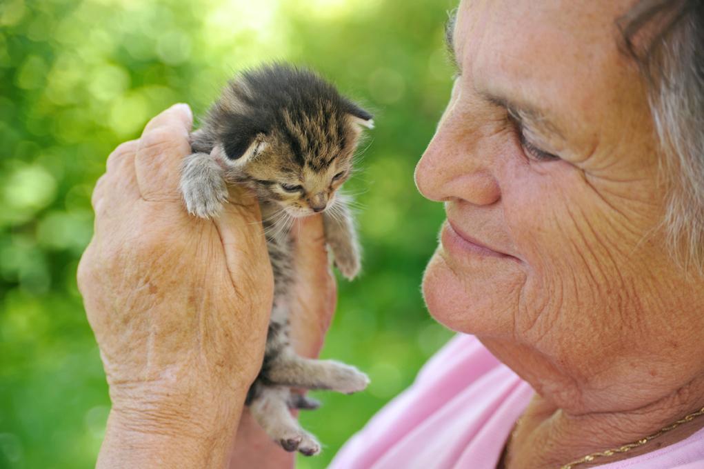 äldre dam med katt