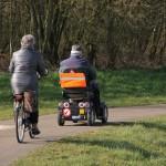 Äldre män vinner mest på elskoter