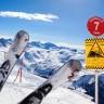 fall på skidor