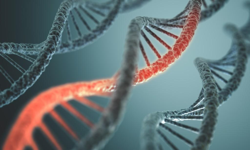 bilden är en illustration av en bit av en DNA-spiral. På bilden ses tre spiraler som löper parallellt med varandra. .