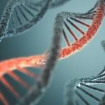 Unik streckkod i nanorör avslöjar bakterier