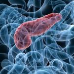 Ny möjlig princip för behandling av diabetes upptäckt