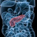 Ny kunskap kopplar hormon till ökad risk för stroke vid diabetes