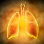 Därför vill forskarna att vi inte ska andas in nanofibrer