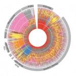 Proteinmönster nytt verktyg för att studera sepsis