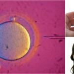 Första skånska barnen födda med hjälp av ny frysteknik