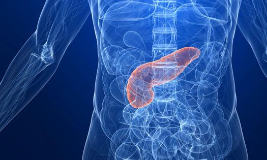 pancreas blå i kropp_beskuren_525_dreamstime