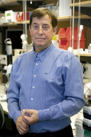 Lars Edvinsson professor