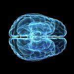 Bild och verklighet stämmer överens vid Alzheimers