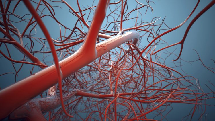 Vascular bifurcations background. Shallow depth of field 3d render.