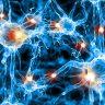 Podd: Epilepsi i nytt ljus
