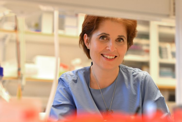 Bilden föreställer Anna Blom, hon sitter vid en labbänk och tittar på oss genom labbhyllorna