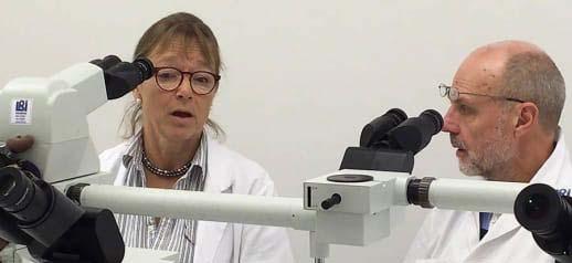 På bilden ses Elisabet Englund och Lars Dahlin. De sitter båda framför ett så kallat dubbelmikroskop och ser att diskutera något. Båda bär labbrock.