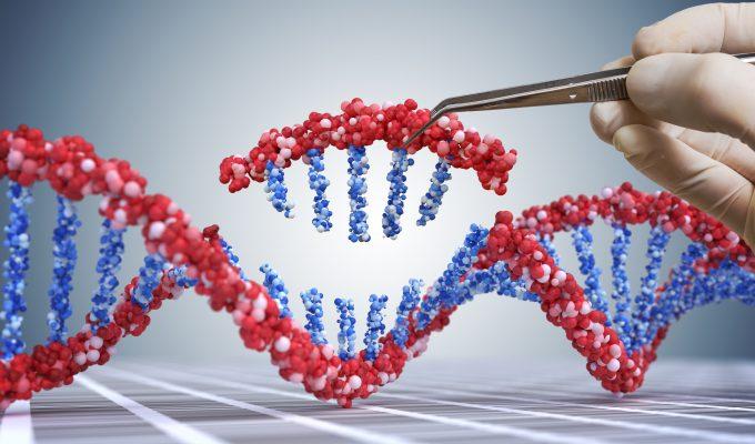 bilden är en illustration av en bit DNA, en närbild av en bit av DNA som plockas bort med en pincett. Bilden ska illustrerar hur man på gentekniksk väg kan byta ut delar av eller hela gener
