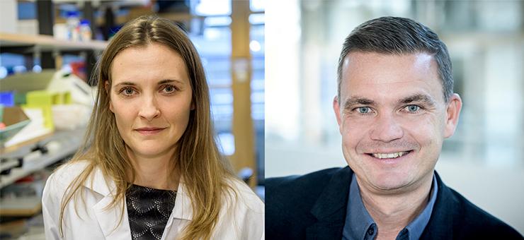 portråttbilder av Anja Meissner och Martin Magnusson. Anja Meissner har långt mörkblont hår som är utsläppt. Bilden är tagen på labb och hon har en vit labbrock på sig. Martin Magnusson, har kortklippt brunt hår och han är klädd i en blå skjorta utan slips och en mörk kavaj.